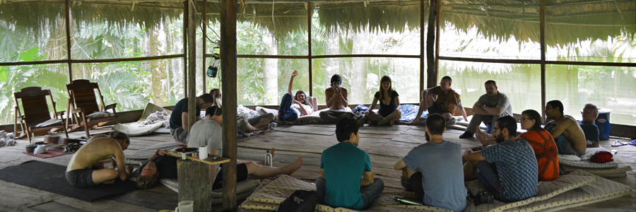 safe ayahuasca