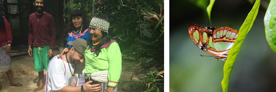 deep ayahuasca healing
