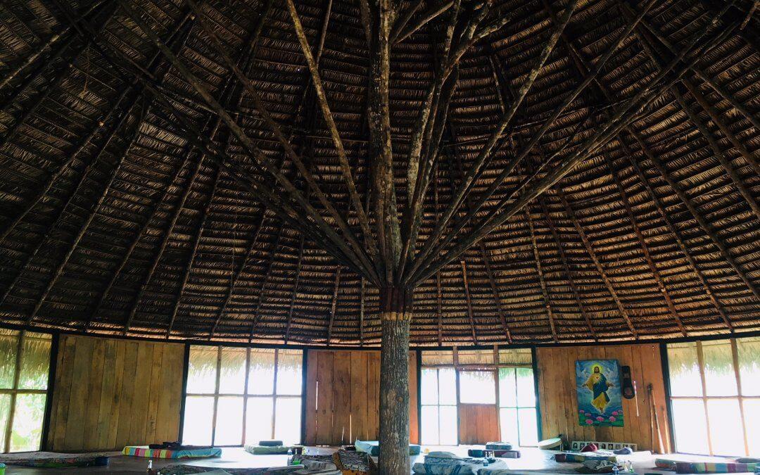 New Maloka roof and EarthMonk partnership